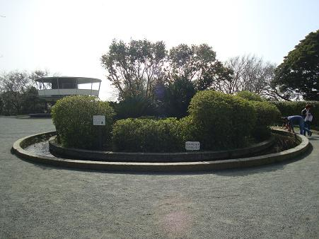 kotubo3.JPG