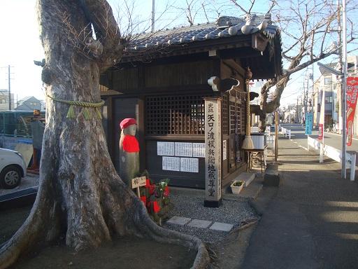 tamagawa14.jpg