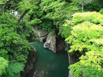 sarubashi4.JPG